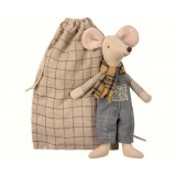 Winter Mouse, Father In Bag